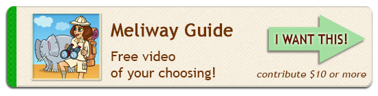 Meliway Travel Movie Maker - Perk Guide