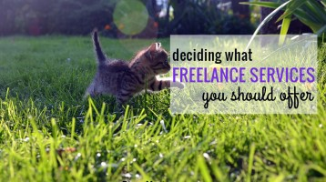 Deciding What Freelance Services to Offer